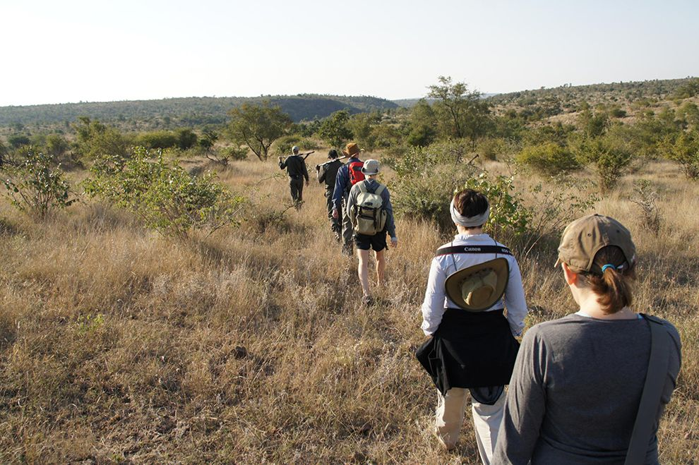 wilderness trail kruger